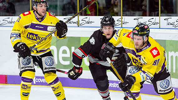 Ice Tigers Verlieren Gegen Krefeld Thomas Sabo Ice Tigers Nürnberg