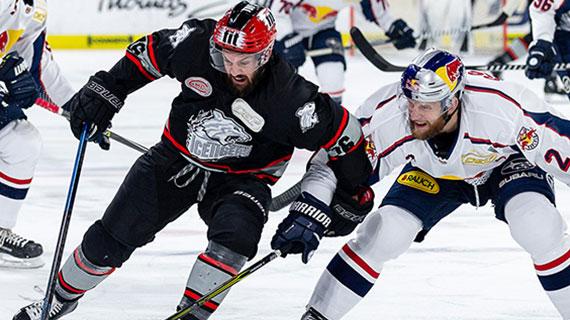 Ice Tigers Verlieren Derby Gegen München Thomas Sabo Ice Tigers